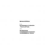 2015-NDS-RL-bfs-sozp-berufsbezogene-LB-TheoriePraxis